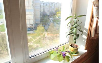 Сухие окна - хорошая вентиляция